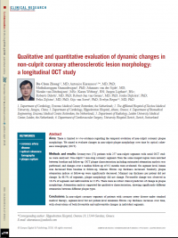 Evaluation of Dynamic Changes In Lesion Morphology