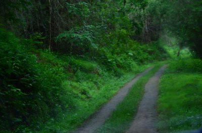 Topslip Path